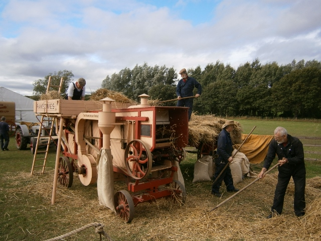 Threshing Machine at Work